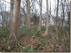 Genoelselderen, verkavelingsweg uitgevend op de Hoolstraat. De tumulus ligt in een privé domein (bos)