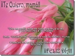 feliz dia de las madres (8)