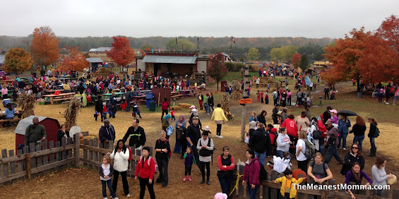 Fall Fun at Cox Farms