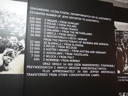 10. De unde au fost deportatii la Auschwitz.JPG