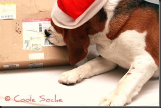 © Coole Socke