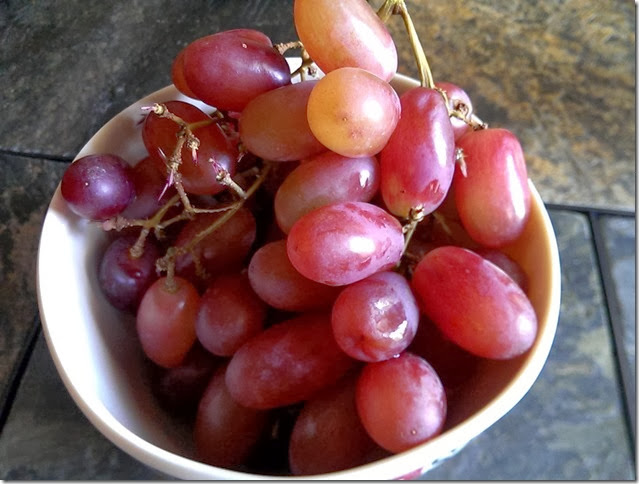 grapes-public-domain-pictures-1 (2292)