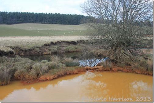 33-rusty-water