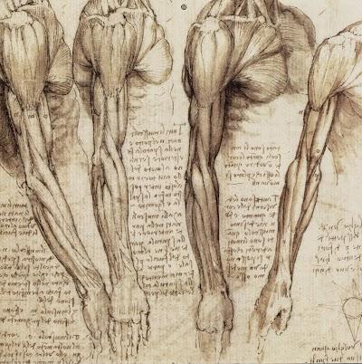 Leonardo da Vinci (25).jpg