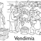 vinoVendemmia-1.jpg