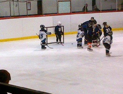 Danica's hockey 5