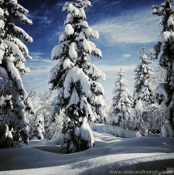 paisagens-de-inverno-winter-landscapes-desbaratinando (11)