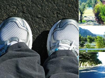 View morning run