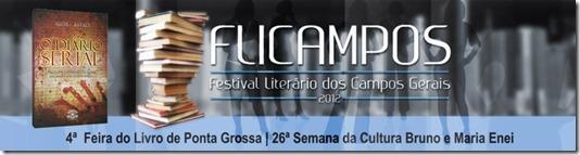 banner_festival-literario