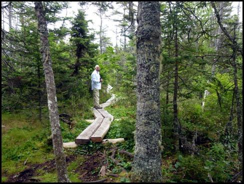 04w2 -  Hike -  to Bog Trail