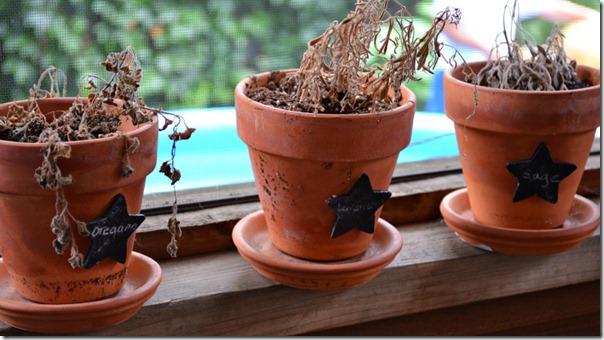 chalkboard_paint_pots_dead_plants