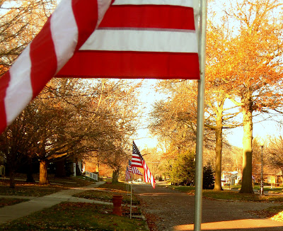 American flags line the Washington Boulevard for Veterans Day