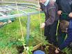 Planting school garden 017.jpg