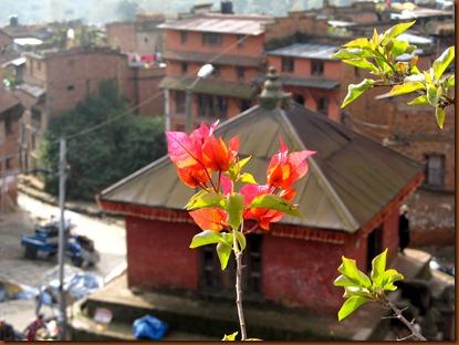 nepal 096