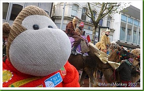 Camels in Wolverhampton Town Centre