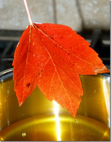 Coating Leaves in Beeswax 3