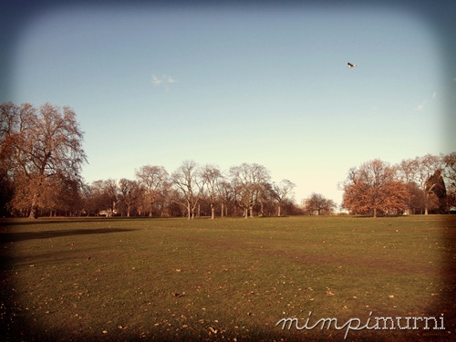Hyde Park in the winter is just as lovely as any other time of the year IMHO.
