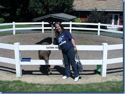3012 Pennsylvania - Gettysburg, PA - Land of Little Horses