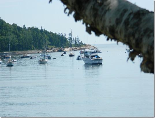 coast 2011 009