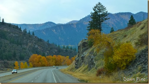 to oregon_012