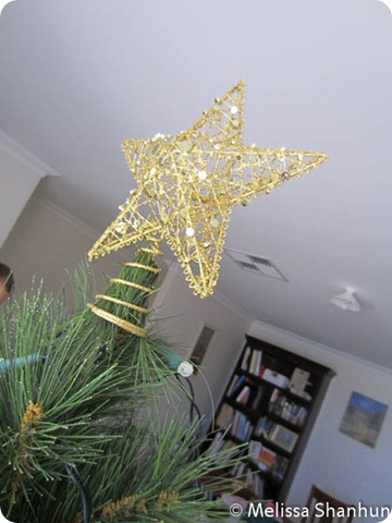 20111203 Christmas Tree 02