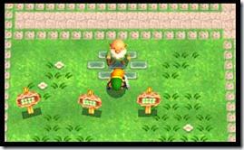 3DS_ZeldaLBW_NBD_StreetPass_00