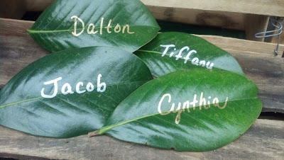 Leaves as Place Cards