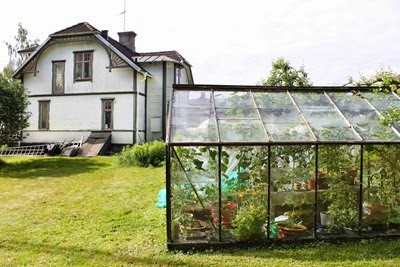 Växthus. Foto: Erika Åberg