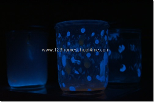 Glow in the dark FireFly Night lights