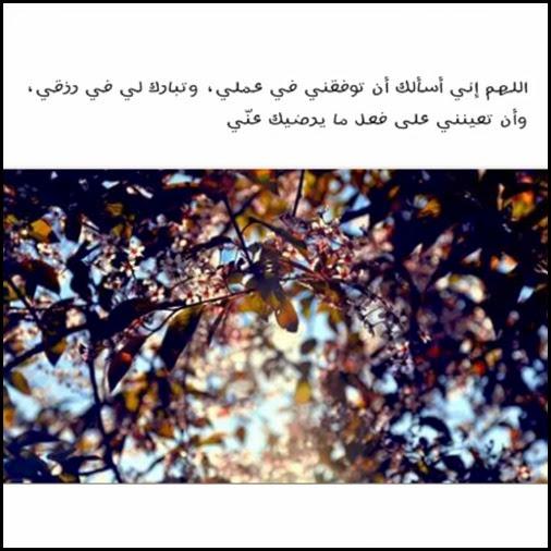PhotoGrid_1407395589964
