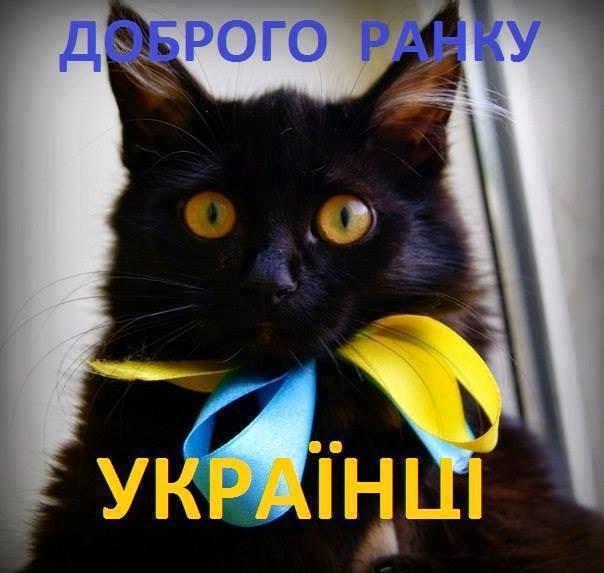 Глава Кременецкого района Тернопольщины Симчук госпитализирован в состоянии комы после ДТП - Цензор.НЕТ 4965