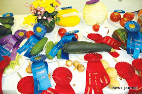 Prize winning vegetables 3x.jpg