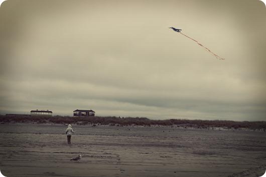 kite IMG_9269