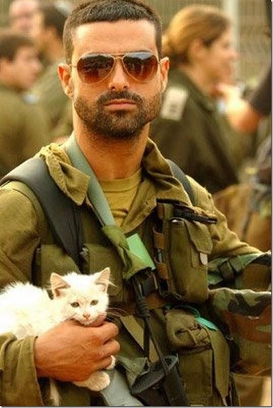 Soldados e animais de estimação (3)