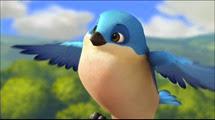 05 l'oiseau