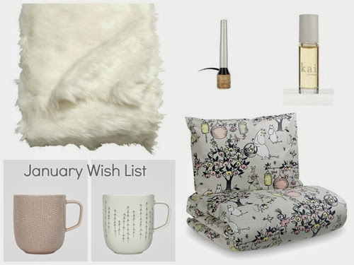 January Wish List