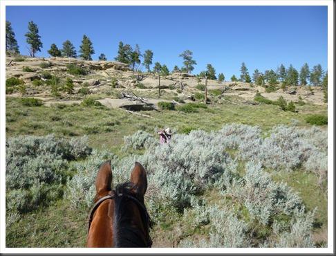 montana 2013 trail 612