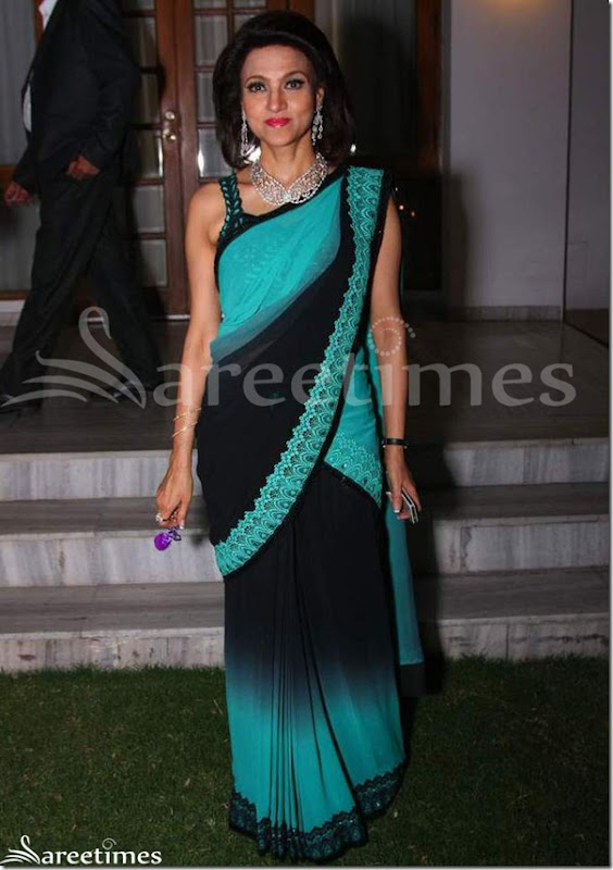 Vandy_Mehra_Dual_Color_Saree