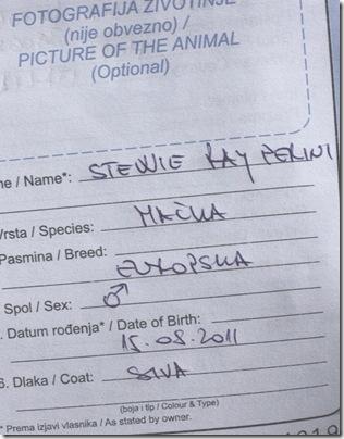 Stewie_Passaporto