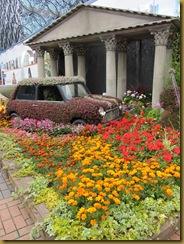 IMG_1776 Mini Garden