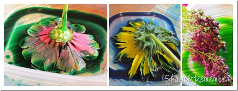 Painting with flowers paint colors