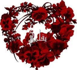 قلب من الورود
