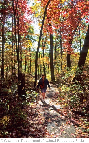 'Fall hiking' photo (c) 2010, Wisconsin Department of Natural Resources - license: http://creativecommons.org/licenses/by-nd/2.0/