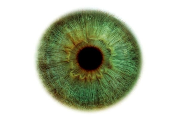 beleza dos olhos (12).jpg