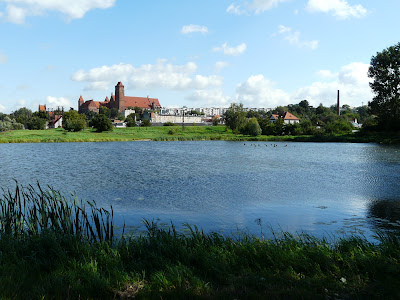 Kwidzyński-Balaton.jpg