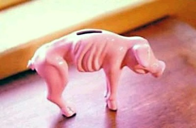 skinny piggy
