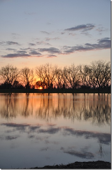 daylight savings the pond sunset  (31)