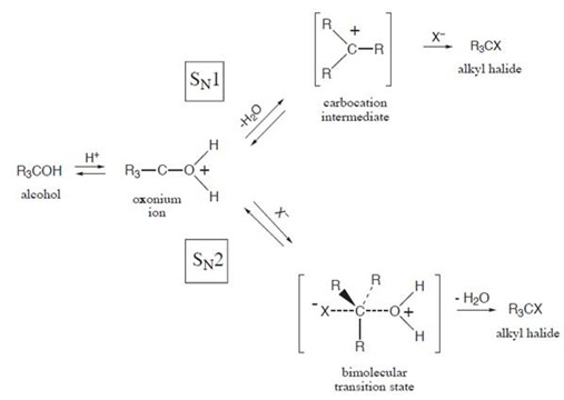 hydrolysis of tert butyl chloride in different In this lab, you will determine whether the hydrolysis of t-butyl chloride proceeds through a 1st order rate law (unimolecular) or a 2nd order rate law (bimolecular.