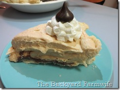 Peanut Butter & Nutella Pie - The Backyard Farmwife