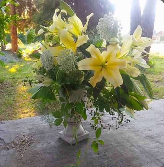 lilies 1150128_499780146763033_1023300840_n bathtub gardens